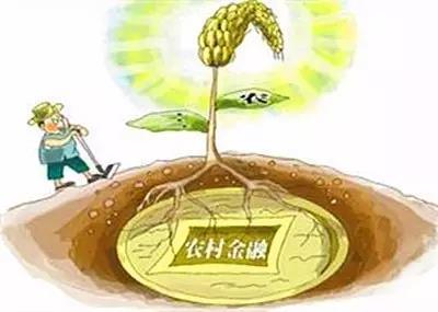 """【声音】张翼:拥抱农村金融,还需放弃固有的""""傲慢与偏见"""""""