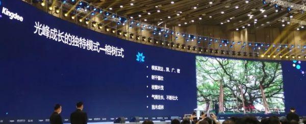 【协会动态】金蝶数据金融平行论坛 聚焦产业链价值重构